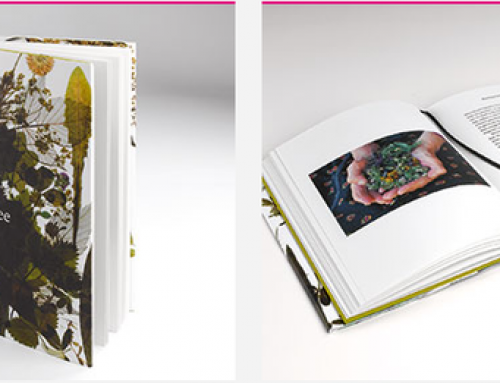 Austria's Most Beautiful Books
